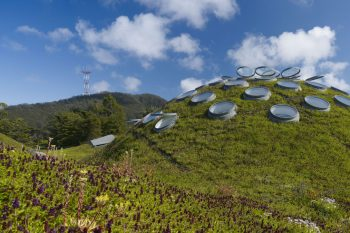 The Living Roof of California Academy of Sciences, San Franciso