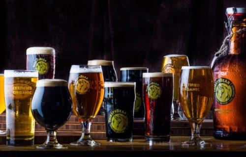 Thirstybear beers
