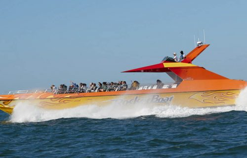 san_francisco_bay_rocketboat_side_1200x675
