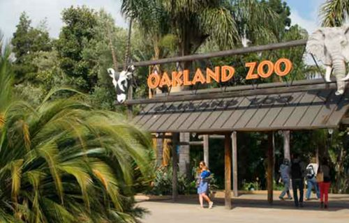 oakland_zoo_entry_sign_1200x675